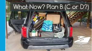 What Now? Plan B (or C, or D?)
